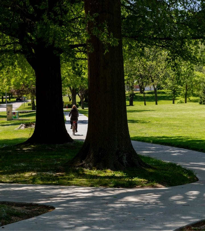 Local Cape Girardeau Park
